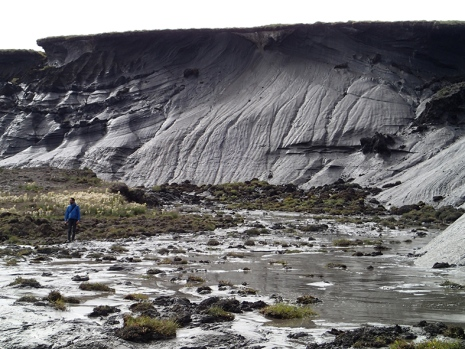 Thawing coastal permafrost in Arctic Canada (note person in photo for scale). Photo:Gustaf Hugelius.
