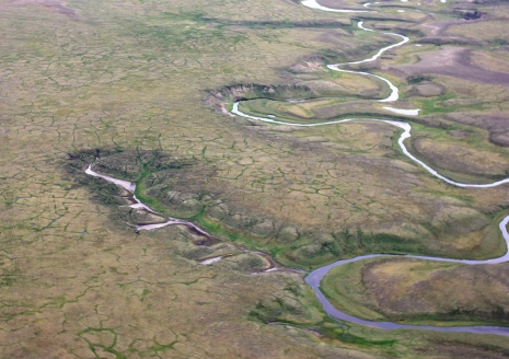 Thawing permafrost in Siberian polygonal tundra. Photo: Gustaf Hugelius.