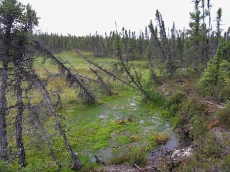 Ground collapse as a result of permafrost thaw, Misaw Lake in west-central Canada. Photo: Britta San