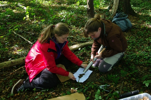 Soil sampling, Alicia Valdés and Karin Hansen pictured. Photo: Guillaume Decocq.