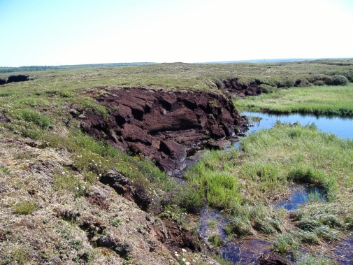 Thawing permafrost and soil collapse in Russia. Photo: Gustaf Hugelius