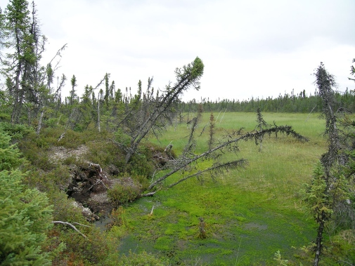 New small lakes are formed when the permafrost thaws and the soil collapses, Tavvavuoma in northern